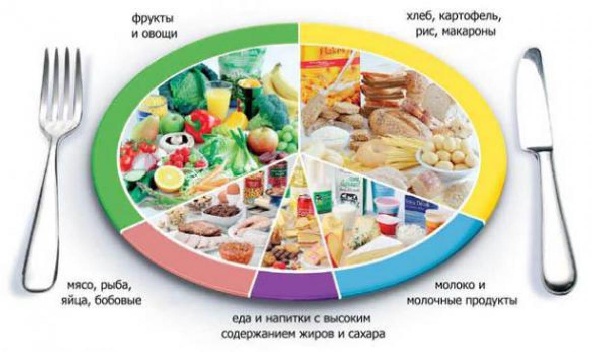 принципы здорового питания школьников